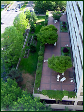 example roof gardens. Black Bedroom Furniture Sets. Home Design Ideas