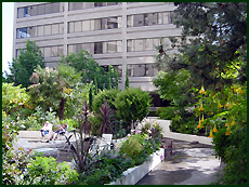 Example Roof Gardens
