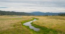 Gibbons Creek in Steigerwald